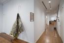 Noel Anderson: Mascuminity Installation View