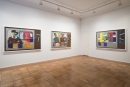 Derrick Adams: LIVE and IN COLOR Installation View