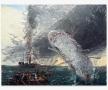 JOHN BRADFORD Moby Dick, 2019