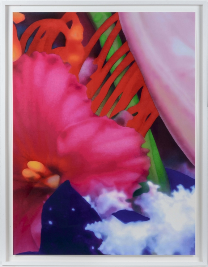 Marc Quinn, Portraits of Landscapes 5, Pigment Print
