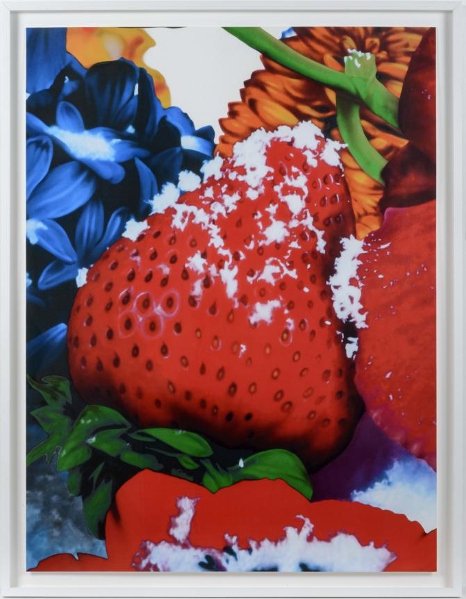 Marc Quinn, Portraits of Landscapes 2, Pigment Print