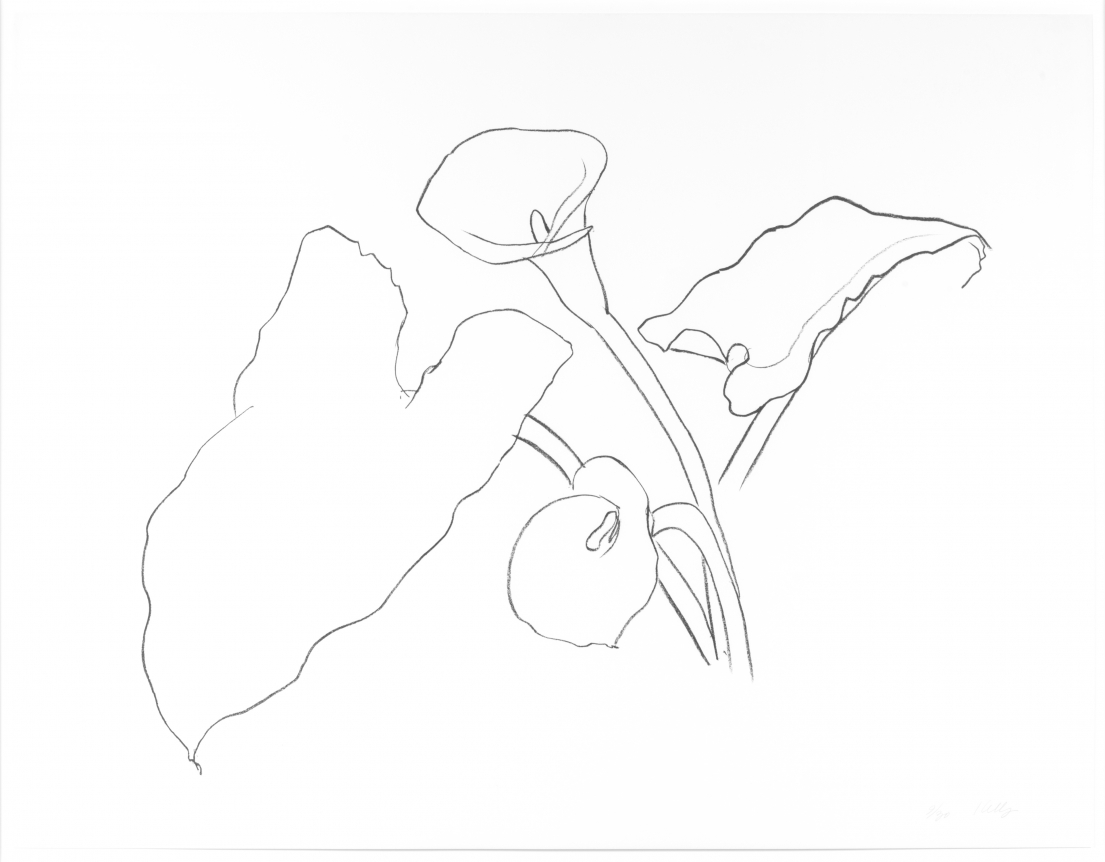 Ellsworth Kelly, Calla Lily I, From the Series of Plant and Flower Lithographs, Lithograph