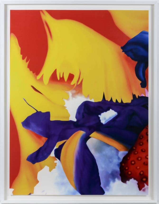 Marc Quinn, Portraits of Landscapes 7, Pigment Print