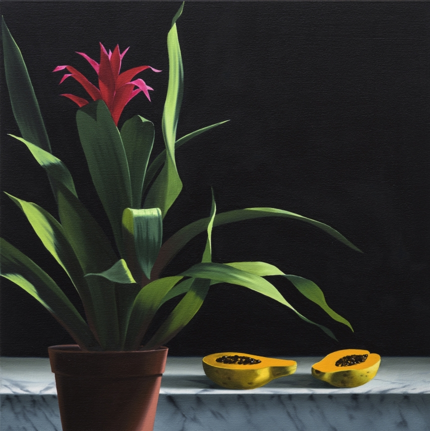 Bruce Cohen, Still Life with Papaya, Oil on canvas