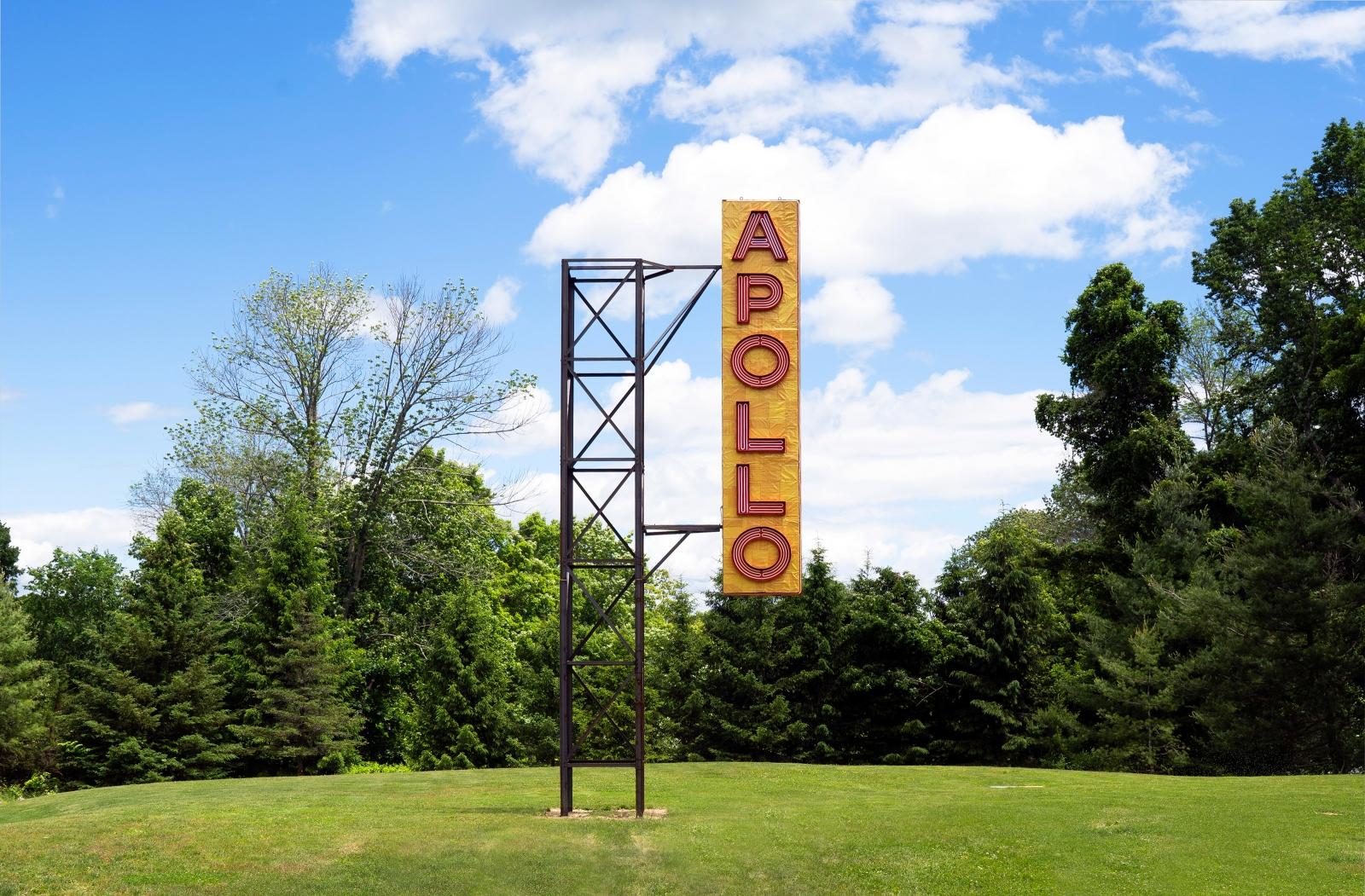 NARI WARD, Apollo / Poll, 2017