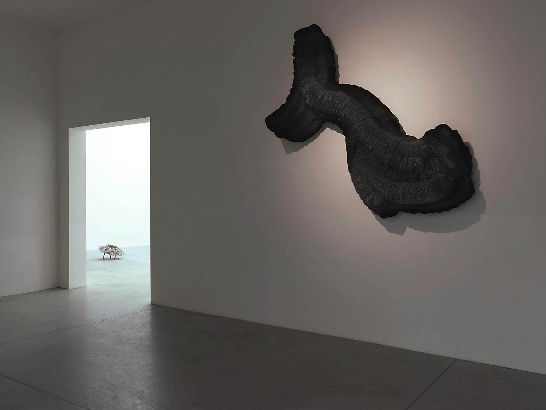 Installation view, Roberto Cuoghi:e da ida pingala has ida ida e o e pingala pingala