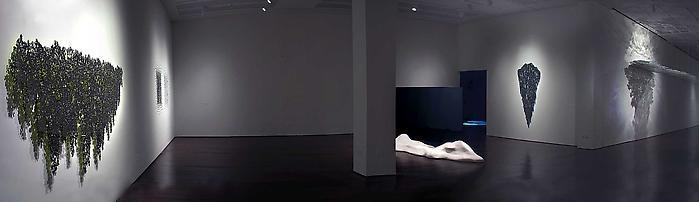 Teresita Fernández Installation at the Blanton Museum of Art, 2009