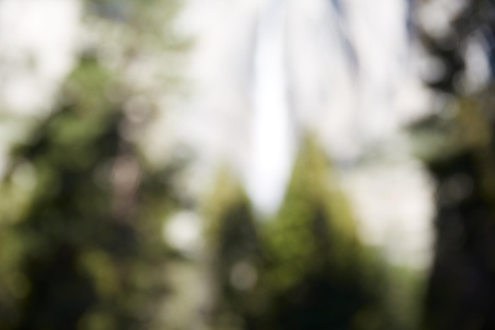 CATHERINE OPIE, Untitled #3 (Yosemite Valley), 2015