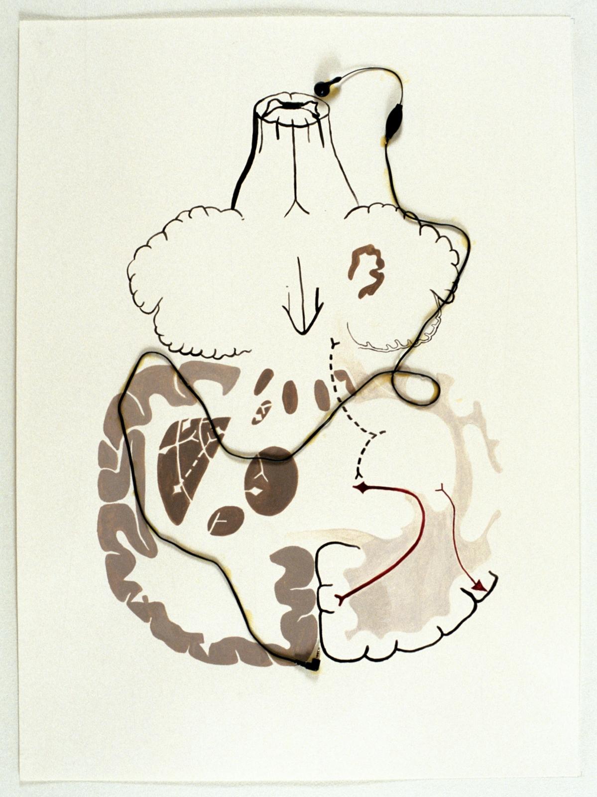 TONY OURSLER (Beige) Between the Ears, 2002