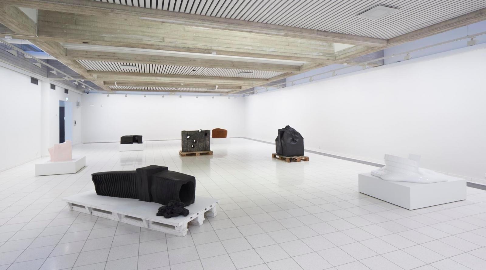 Erwin Wurm:Disruption