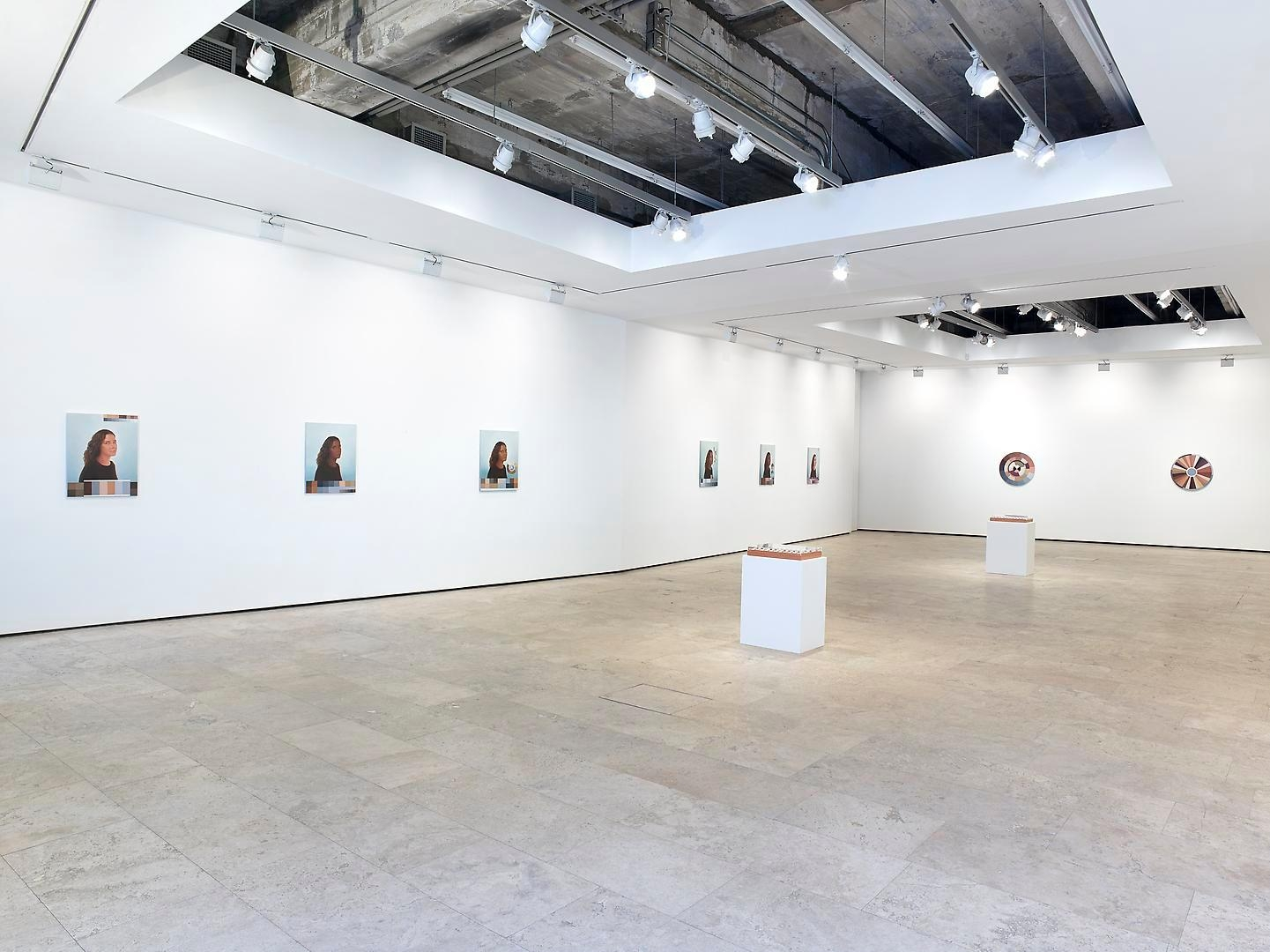 ADRIANA VAREJÃO: Polvo Installation view 1