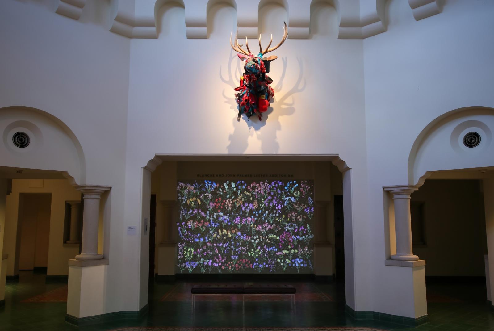 Jennifer Steinkamp: Botanic 3, Installation view,McNay Art Museum, San Antonio, TX
