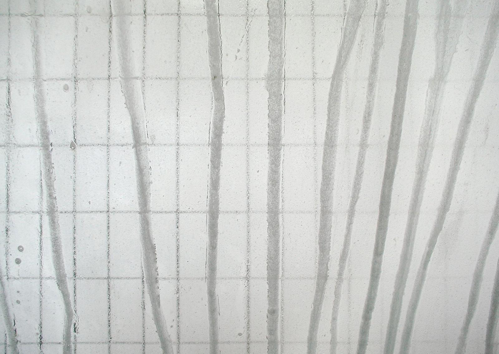 JÖRG SASSE, 2439, 2001