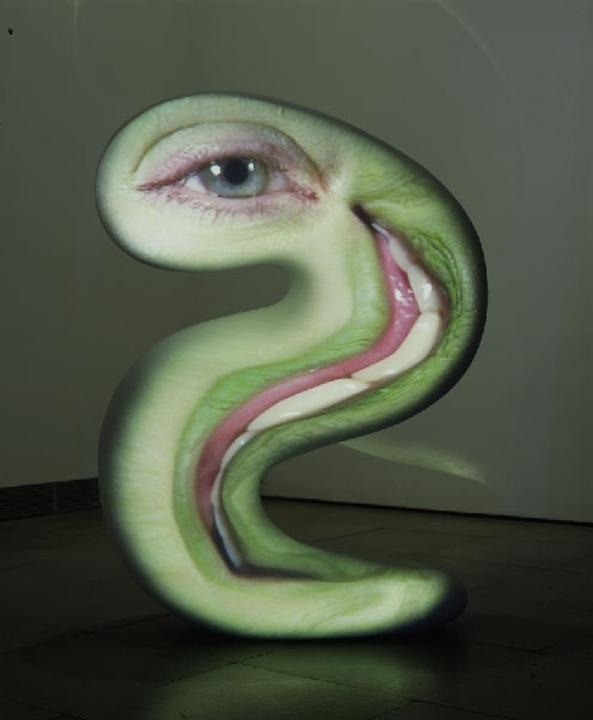 TONY OURSLER, Snake, 2003