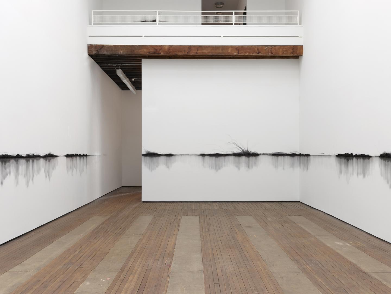 Teresita Fernández, Fire (America) installation view 3