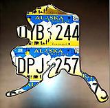 License Plate Art Individual States