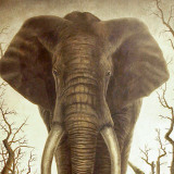 Robert Bissell Original Work