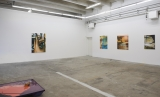 Installation view, Painters? Painting?, 2016