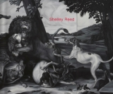 Shelley Reed - Danese/Corey exhibition catalogue