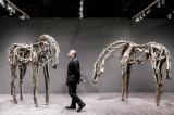 """Single Artist Presentations Shine at the ADAA Art Show"" on Artnet News"