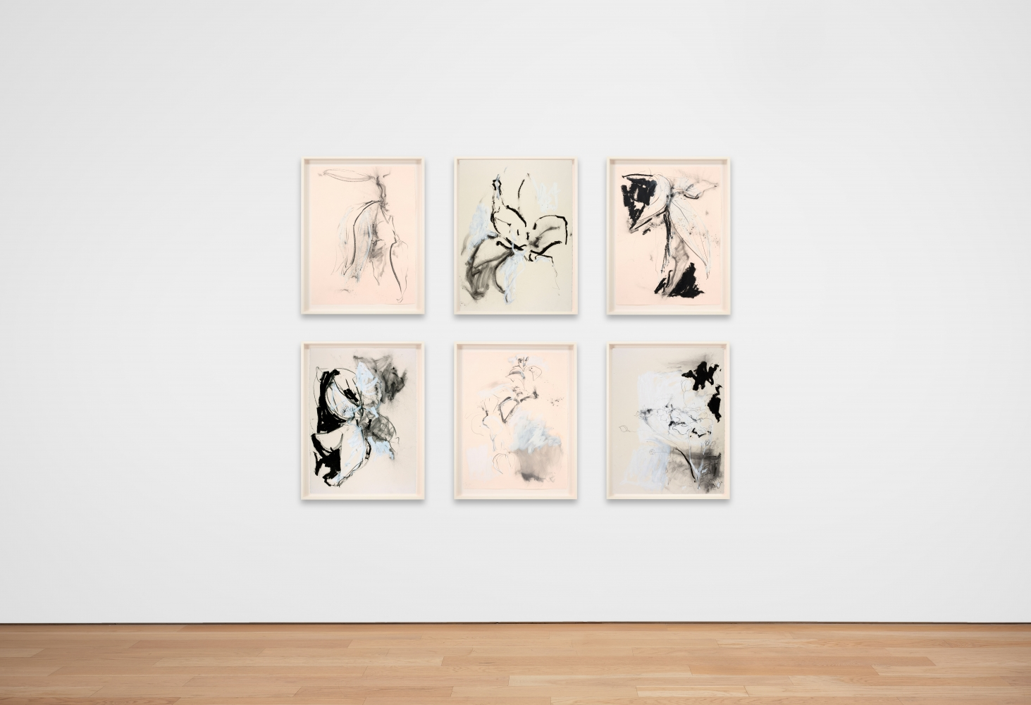 Joseph Havel  First Flowers (S.F.) 2, 2017  Graphite and oil paint on paper  30 x 23 inches  76.2 x 58.4 cm