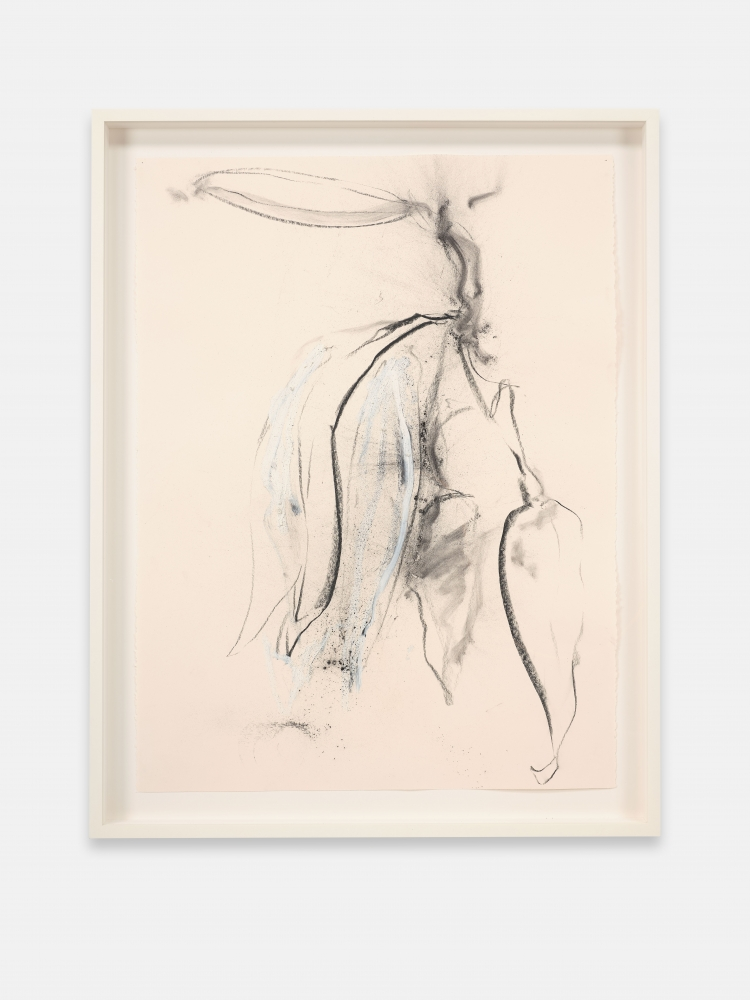 Joseph Havel  First Flowers (S.F.) 6, 2017  Graphite and oil paint on paper  30 x 23 inches  76.2 x 58.4 cm