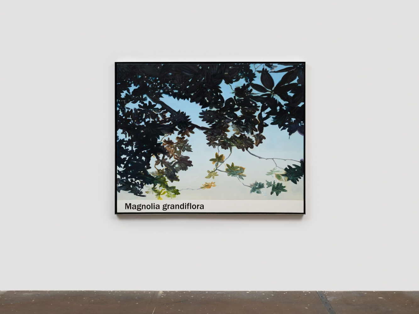 """Rob Reynolds  """"Magnolia"""", 2021  Oil, alkyd and acrylic polymer paint on canvas in welded aluminum artist's frame,  Framed Dimensions:  48 3/4 x 60 3/4 inches"""