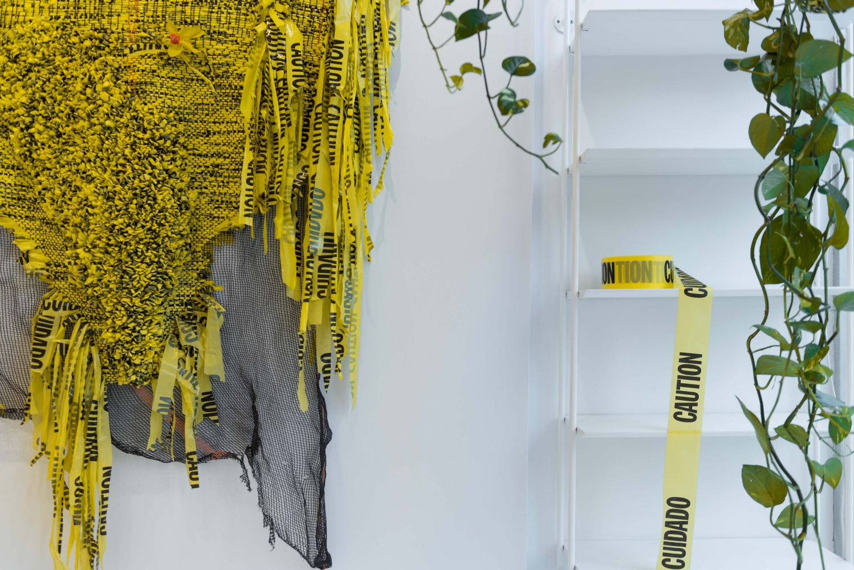 Installation view, 'Borinquen Gallo: Like a Jungle for a Lovestruck Bee', 317 10th Avenue, New York, 2017.
