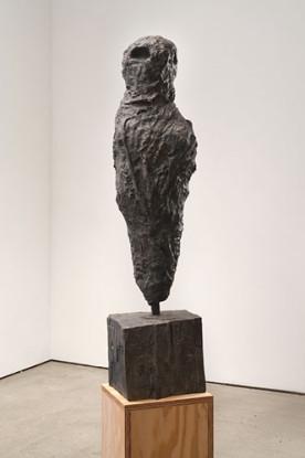 Hope Atherton  Falcon, 2013