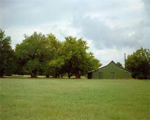 Green Warehouse, Newbern, Alabama, 1981