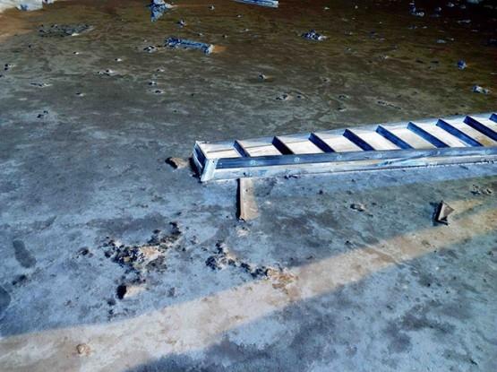 IPS #3885 (Ladder), 2011