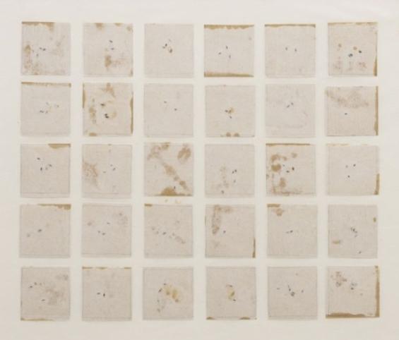 Seed Calendar, River Tree (SBCA), 1993
