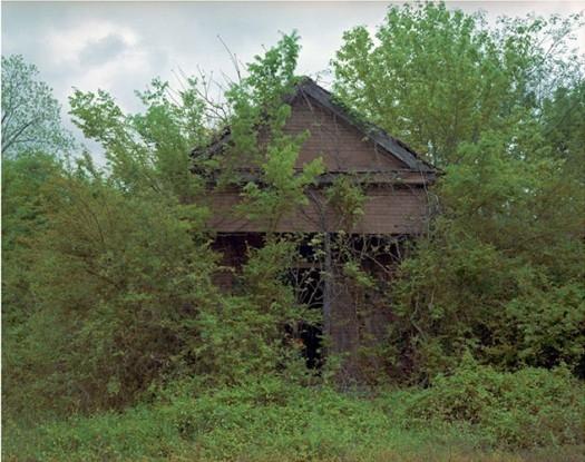 Building with False Brick Siding, Warsaw, Alabama, 1991
