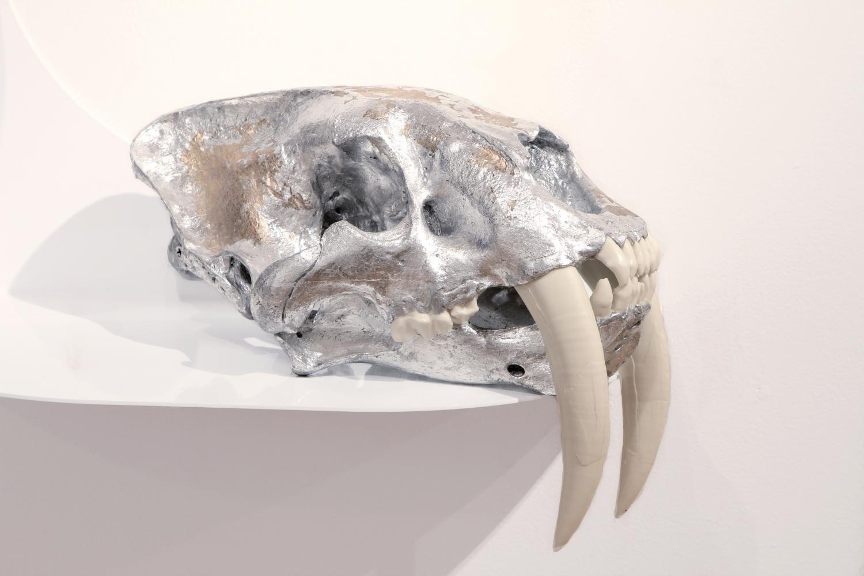 Semi-Feral Skull I
