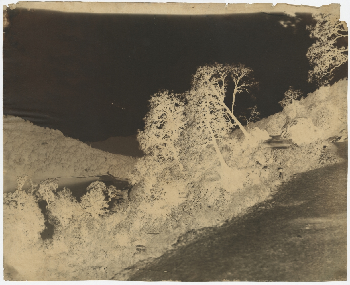 """Dr. John MURRAY (Scottish, active in India, 1809-1898) View of lake, India, circa 1858-1862 Calotype negative, waxed, with selectively applied pigment 38.2 x 47.2 cm Inscribed """"25/12"""" in ink on verso"""