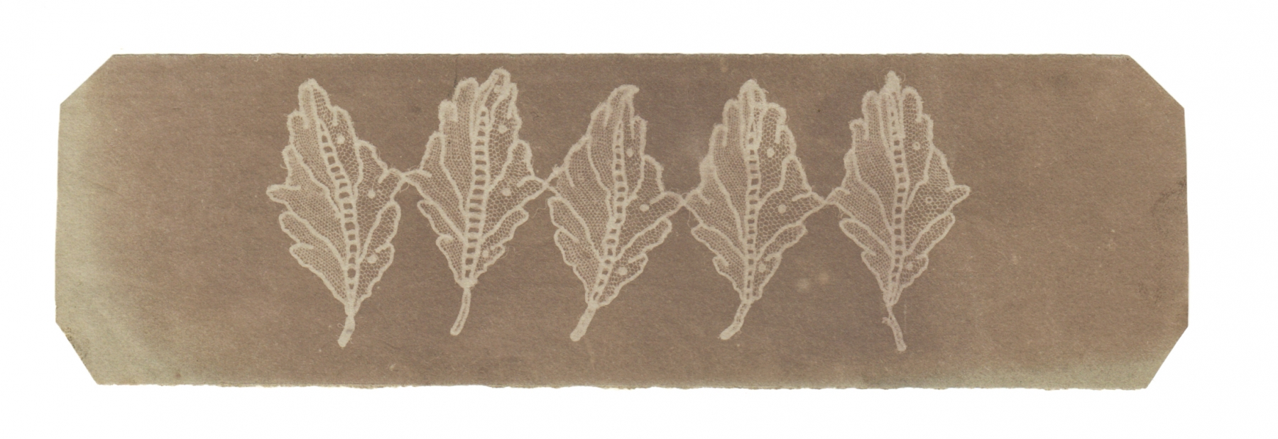 Attributed to Nevil STORY-MASKELYNE (English, 1823-1911) Leaves of lace, circa 1840 Photogenic drawing negative 5.0 x 17.0 cm, corners trimmed