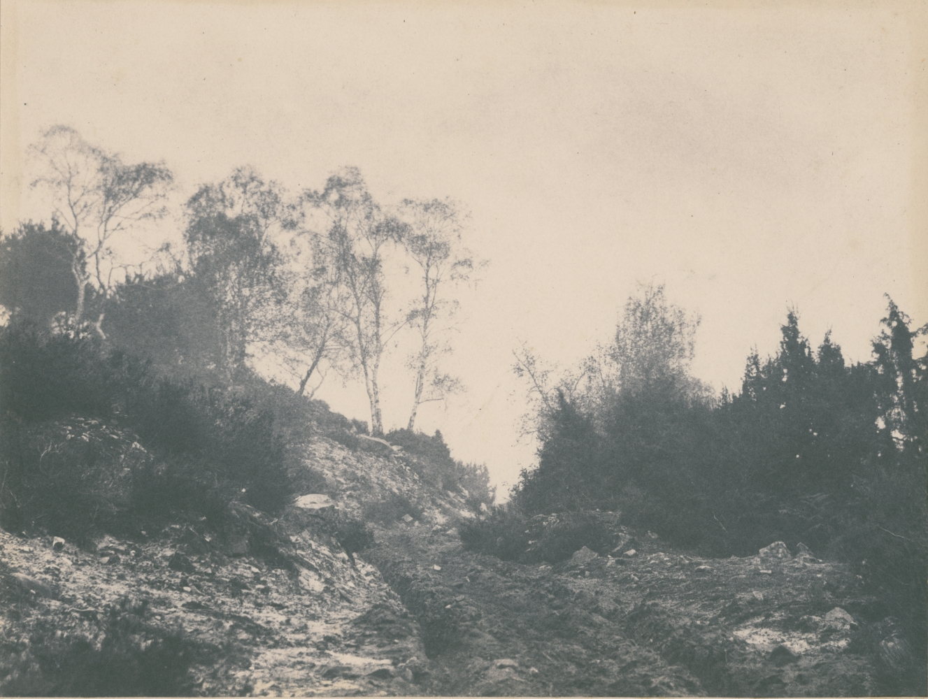 """Eugène CUVELIER (French, 1837-1900) Pathway in the Forest of Fontainebleau*, October 1862 Salt print from a paper negative 19.8 x 25.8 cm, ruled in pencil, mounted on 39.5 x 52.2 cm paper Numbered """"N. 168"""" and dated """"8br 62"""" in pencil on mount"""