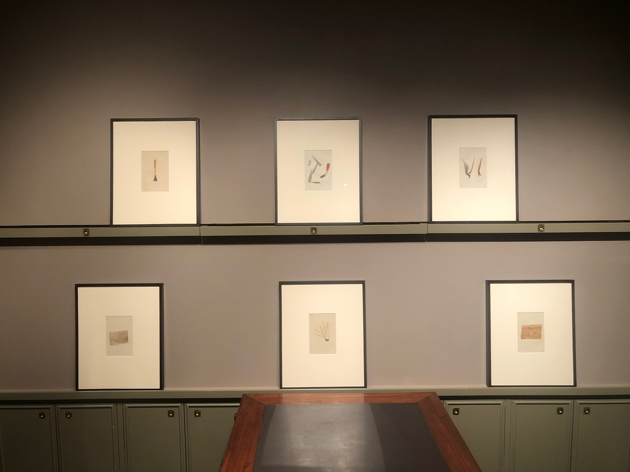 Critters: Hand-Colored Zoological Photomicrographs Installation View Four