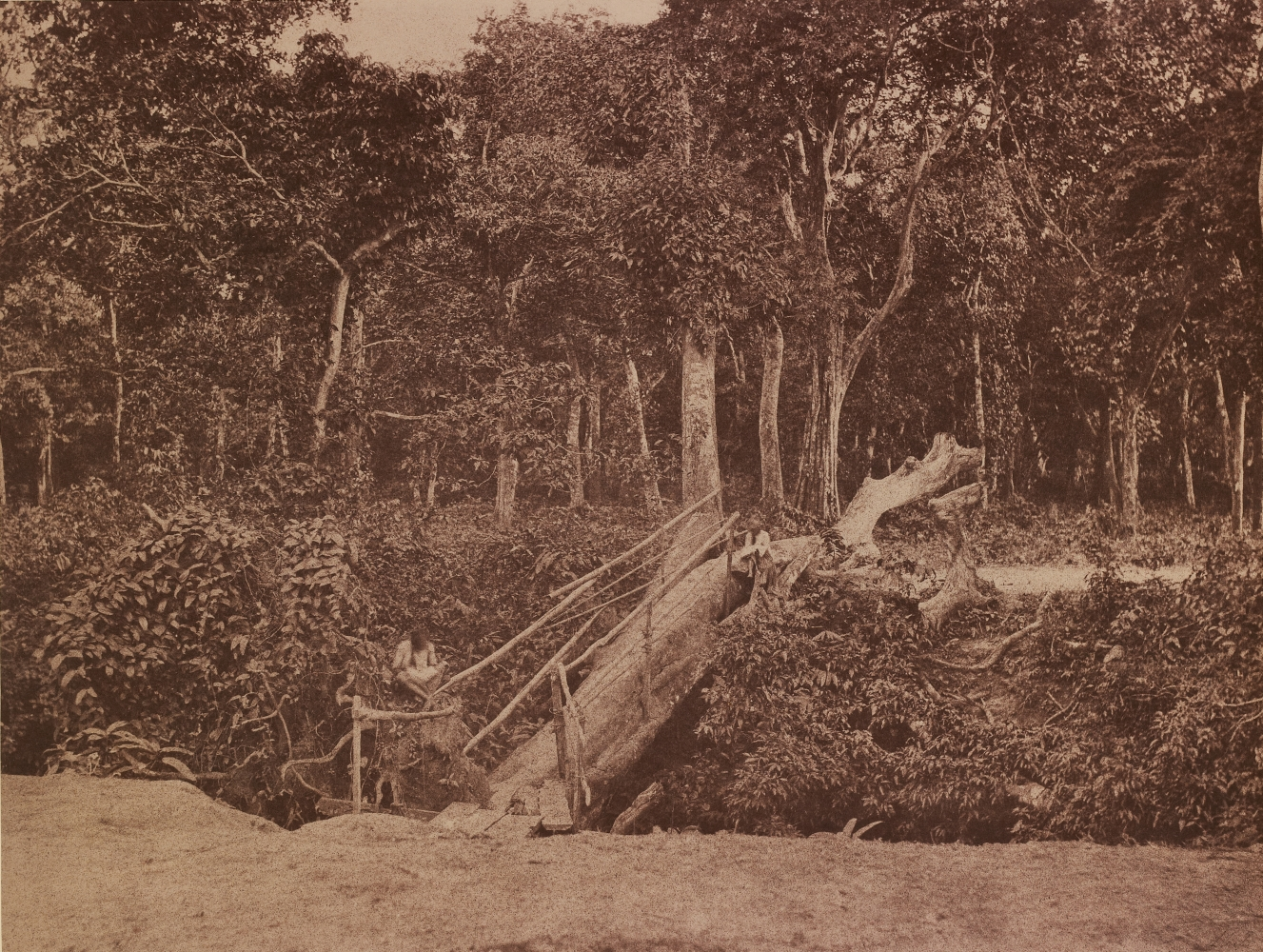 """Captain Linnaeus TRIPE (English, 1822-1902) """"No. 118. Rangoon. Natural Bridge."""" Burma, 1855 Albumenized salt print from a waxed paper negative 25.2 x 33.3 cm mounted on 45.6 x 58.3 cm paper Signed """"L. Tripe"""" in ink. Photographer's blindstamp and printed label with plate number, title and """"A fallen tree over Tiger Alley near the American Mission at Kemindine."""" on mount."""
