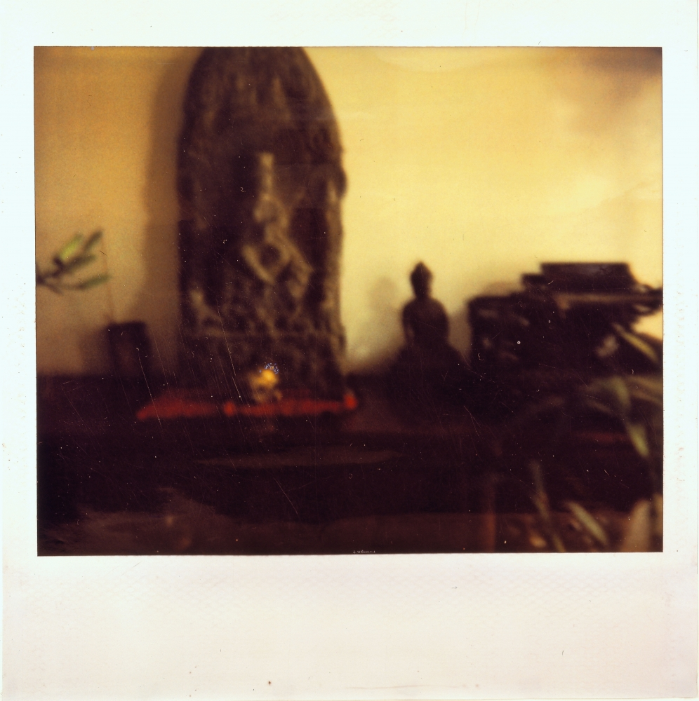 Color polaroid photo by Liu Wei featuring a Buddha and a plant