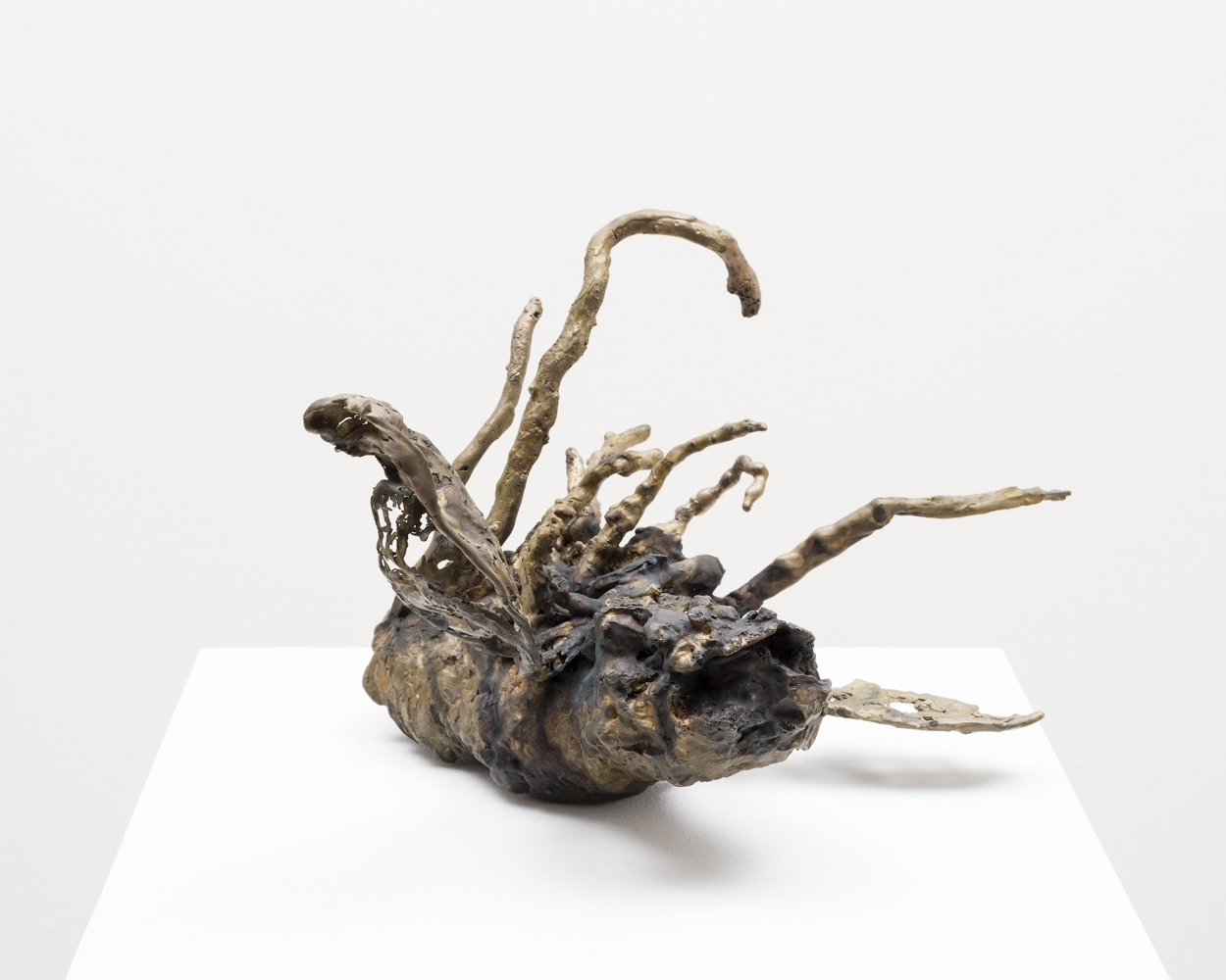 Small cast bronze sculpture of dead insect by Michele Oka Doner.
