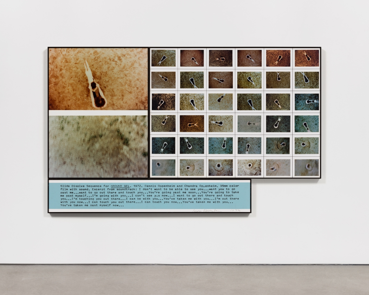 Three paneled piece depicting microscopic slides arranged in a grid with blue text below by Dennis Oppenheim.