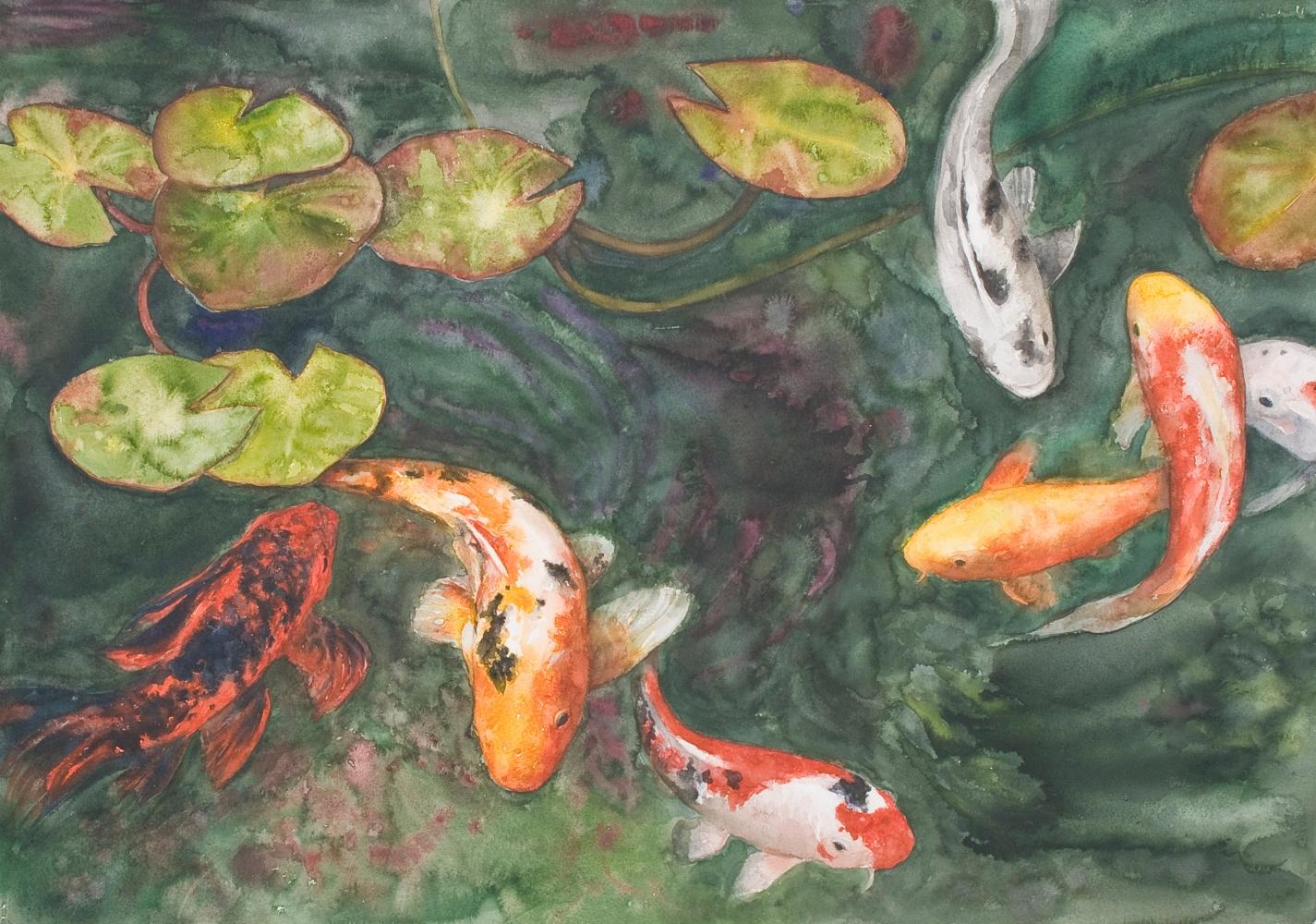 "Swirling Koi  29"" x 41""  Watercolor"