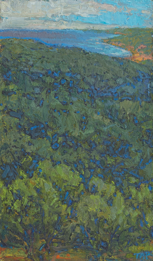 """Thomas Paquette, High View To The Water  6.62"""" x 4""""  Oil/Paper/Birch Ply"""