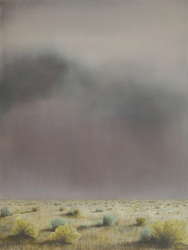 """Rhea Cutillo, Storm Over High Desert 40"""" x 30""""  Oil On Linen"""