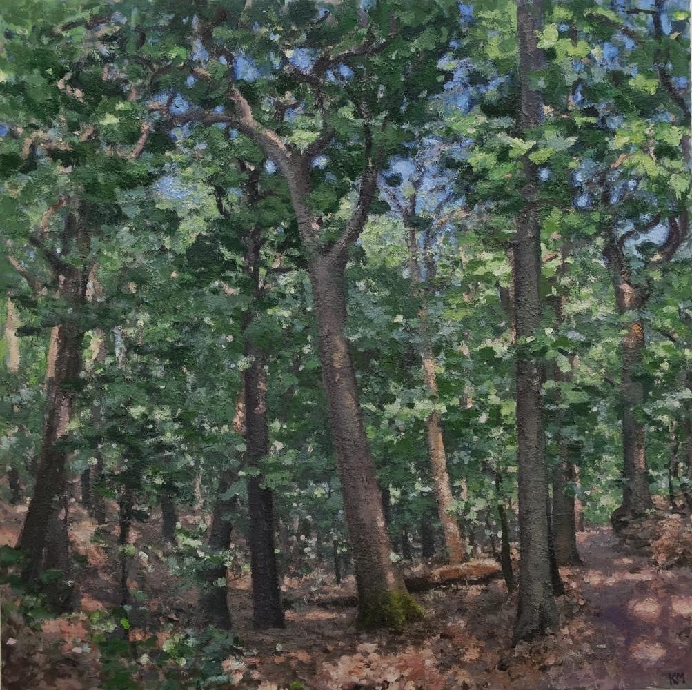 """Oak Grove  90"""" x 90""""  Oil On Canvas"""