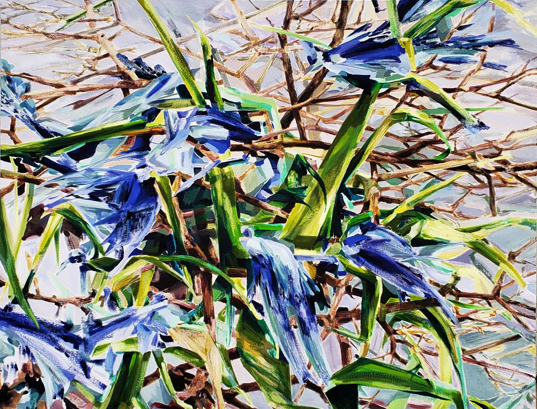 """Blue Jay  35"""" x 44""""  Oil On Canvas"""