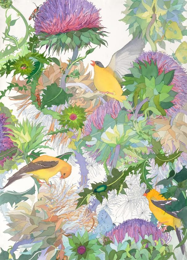 """Thistle Lunch, 40"""" x 30"""" Watercolor"""