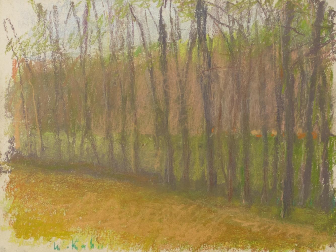 Wolf Kahn, Brake, 1989, Pastel, 9x12 inches, Wolf Kahn Pastels, Wolf Kahn Pastels for sale, Wolf Kahn trees
