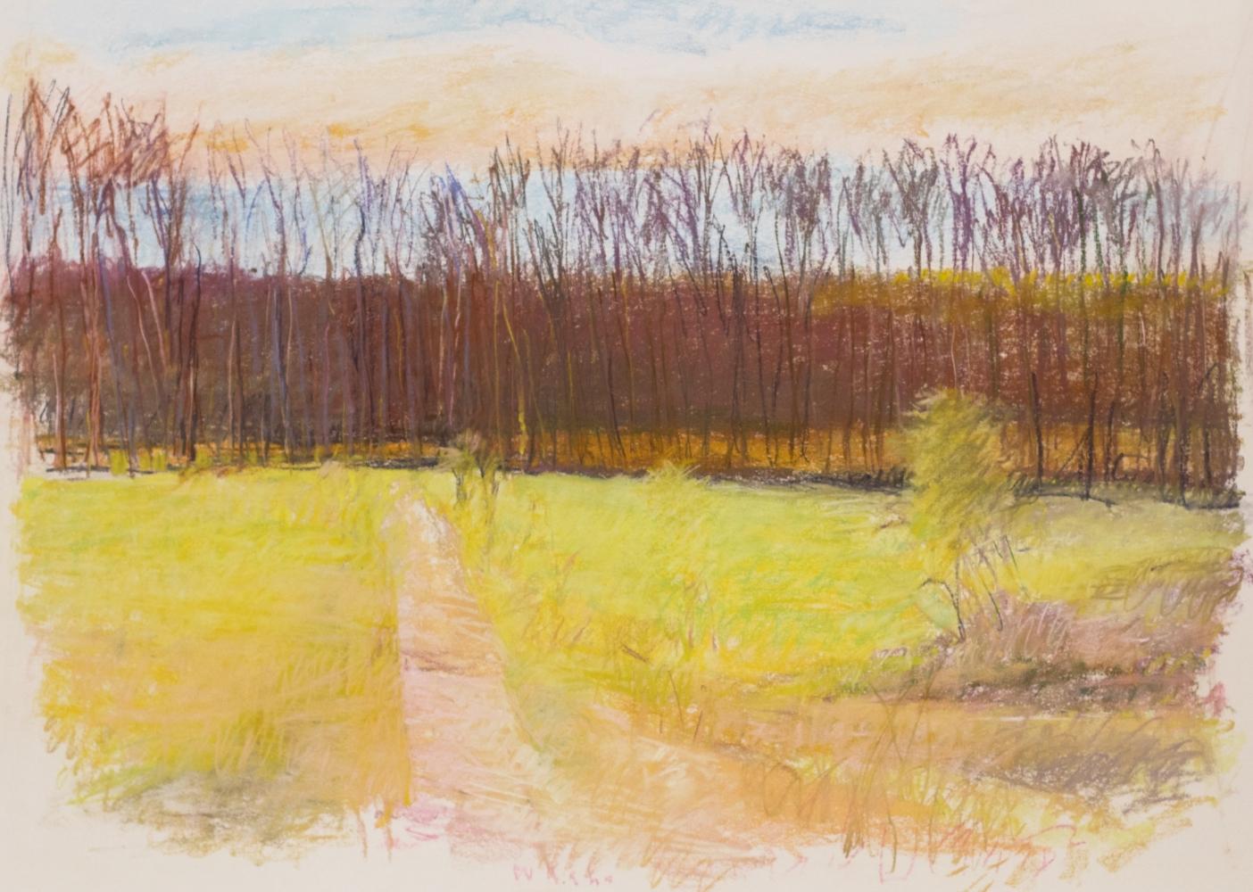 Uphill Path - Apple Pie Ridge, 1989,  Pastel on paper, 30 x 40 inches, Wolf Kahn art for sale, Wolf Kahn Landscape, Wolf Kahn Pastels